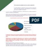 protocolo e informe