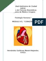 Unidad 1 Cardiaco