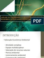 DESEMPENHO DE MODELOS DE VALORAÇÃO ECONÔMICA DE DANOS f