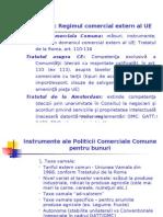 CSE Tema VIII Regimul Comercial Extern Al UE