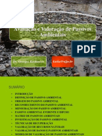 PASSIVO AMBIENTAL- P1