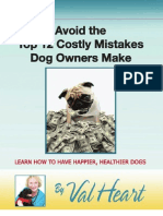 Don t Screw Up Your Dog Avoid the Top 12 Mistakes Dog Parent s Make