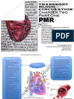 PMR Blood Circulation and Transport Part One