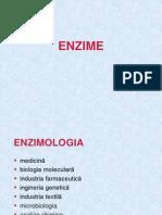 1 enzime