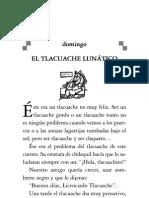 TLACUACHE LUNATICO