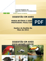 Slide de Anatomia e Fisiologia Animal IV Semestre