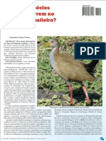 aves pantanal quantas