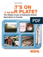 Whats on Your Plate?