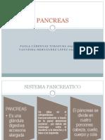 Funcion Pancreatic A Expo Biokimica (2)