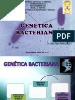 TEMA 2 GENÉTICA BACTERIANA