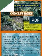 conclusiones.EIA