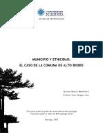 tesis_municipioetnicidad_altobiobio