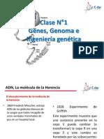 Cromosomas y Genes Clase 1 y 2