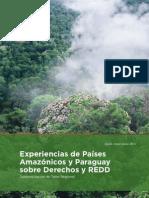 Experiencia de Países Amazónicos y Paraguay sobre Derechos y REDD+