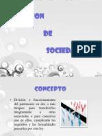 Ecsicion y Otras Formas de Org.