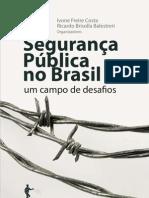 Livros_Segurança_pública_no_Brasil_um_campo_de_desafios