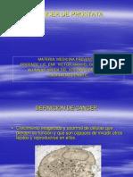 Cancer de Prostata Med. Prev.