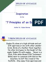 Principles of an Eagle 2