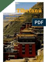 CVICENI Kelder CS Pet Tibetanu