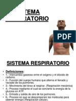 Sistema Respiratorio Anatomia II