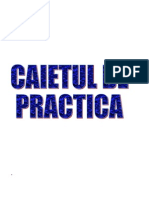 REFERAT_PRACTICA_CIG