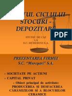 Auditul Ciclului Stocuri - Depozitare
