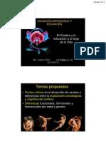 Cerebro y Educacion Version 5