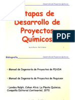 proyectos-101026084004-phpapp02