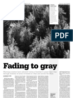 Dying Forests package, page 2