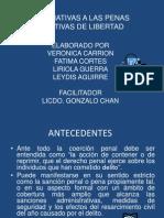 Alternativas a Las Penas Privativas de Libertad Veronica