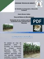 Mario Alvarez Tema del Módulo de Microbiología