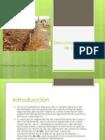 metodos modernos de descontaminacion de suelos