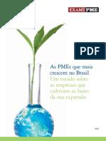 As PME Que Mais Crescem No Brasil - Deloite