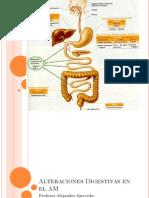 Alteraciones Del Sistema Digestivo
