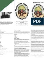 Proyectos Asociacion Para El Desarrollo Industrial - Triptico- Hoja Oficio
