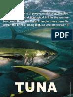 wwfcoraltriangletunastrategyfactsheet2009