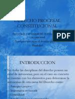 Derecho Procesal Constitucional Naturaleza