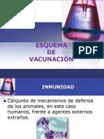 ESQUEMA DE VACUNACIÒN