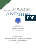 makalah amfibi
