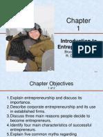01 Intro to Entreneurship