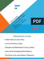 Java Software Platform