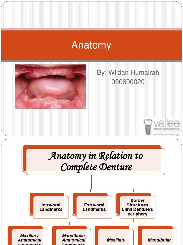 Anatomy Landmark | Lip | Dentures