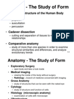 Anatomical Terms Outline
