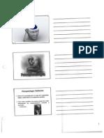 1-Psicopatologia