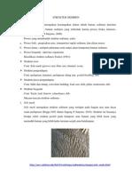 Struktur Sedimen Paper