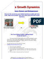 Business Growth Dynamics