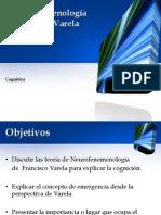 Neurofenomenología