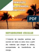 transformaoeutilizaodeenergia-110517181132-phpapp01