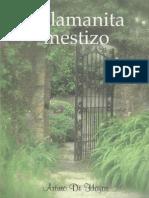 El Lamanita Mestizo