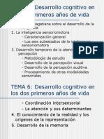 Tema6 La Teoria de Piaget